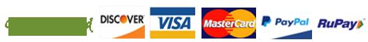 b2b accept payment